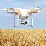 обмер полей дронами